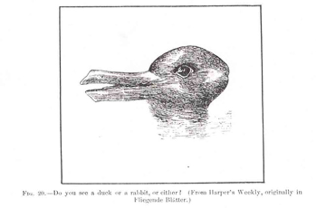 Jastrow-Duck-Rabbit
