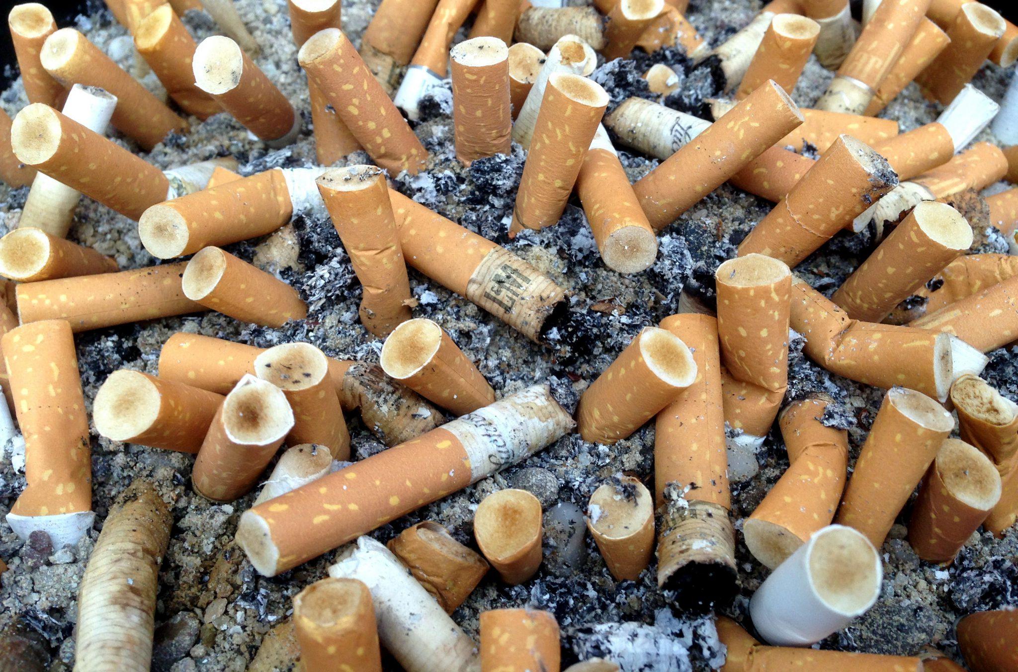 Mégots; cigarettes