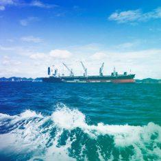 IBM & Maersk Launch TradeLens Blockchain Shipping Platform