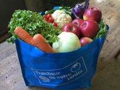 Blue Fraicheur de votre jardin bag of fresh fruits and vegetables and link to website. Home delivery services