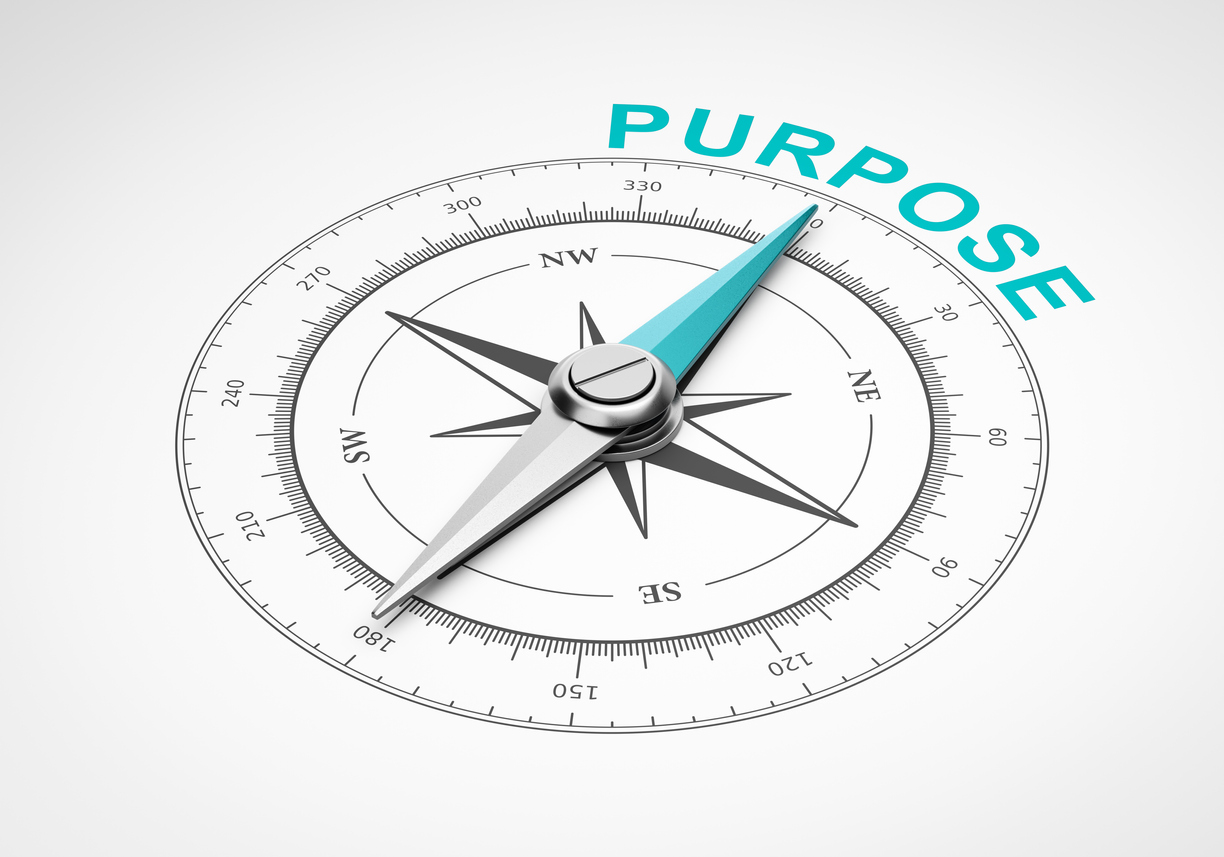looking for purpose in a job