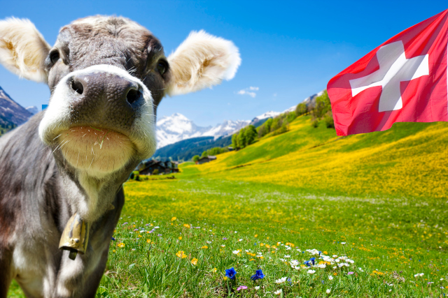 Vacances Suisse